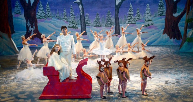 You can't help but catch the Christmas spirit while enjoying these cold weather activities in Roanoke VA. Read on to learn about the holiday celebrations.