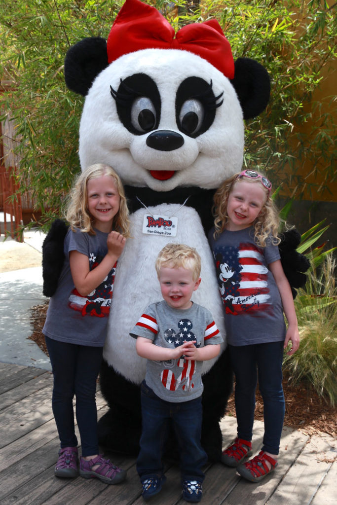 Learn a little about the Giant Pandas in the United States you may find on your visit to top spots - how to have the best viewing experience possible.