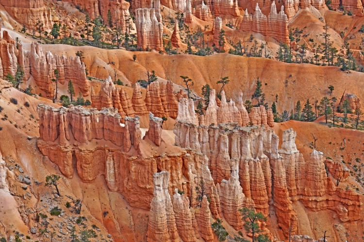 Planning a trip to Bryce Canyon. Hoodoos at their best.