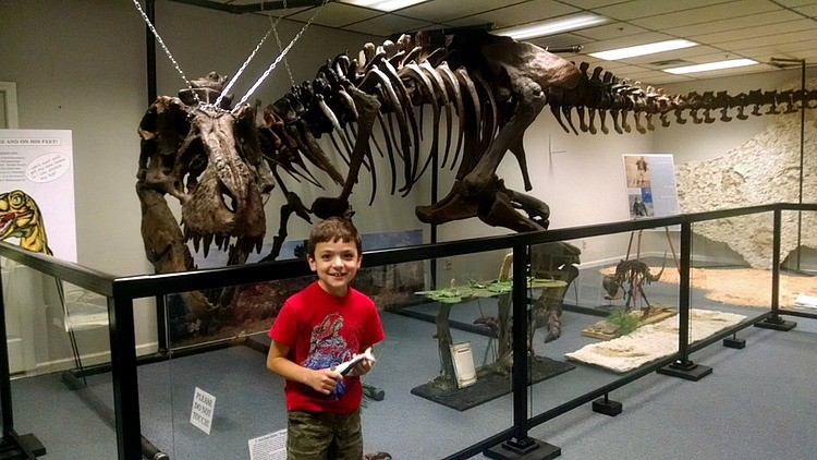 Happy to find a skeleton of a Tyrannosaurus Rex on display