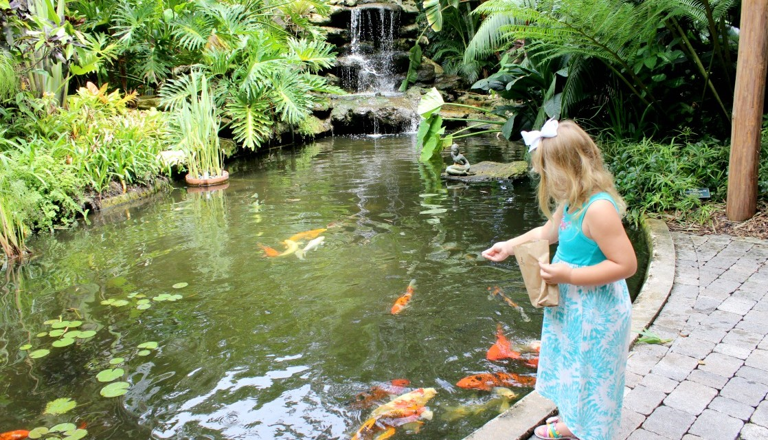 Three Great Family Friendly Attractions To Visit In Sarasota, Florida