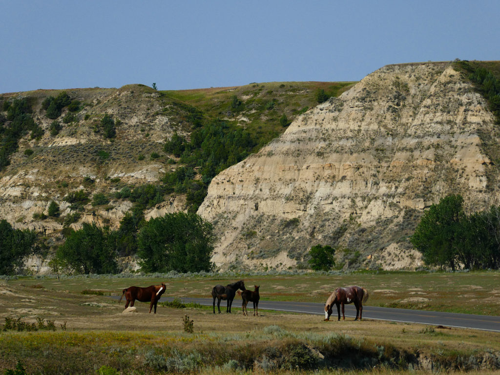 Making the Best places to Travel in 2017 is Medora, North Dakota, an undiscovered and overlooked area of America.