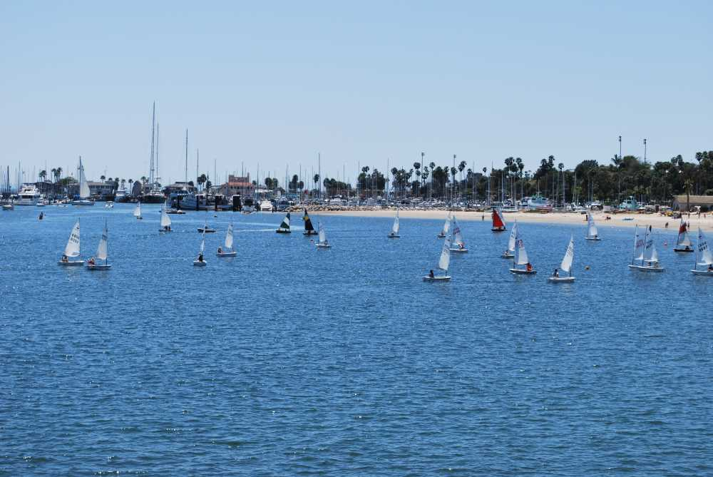 Just two hours from L.A., Santa Barbara is a dog-friendly beach city that welcomes families and dogs with many amenities and activities. Read all about it!