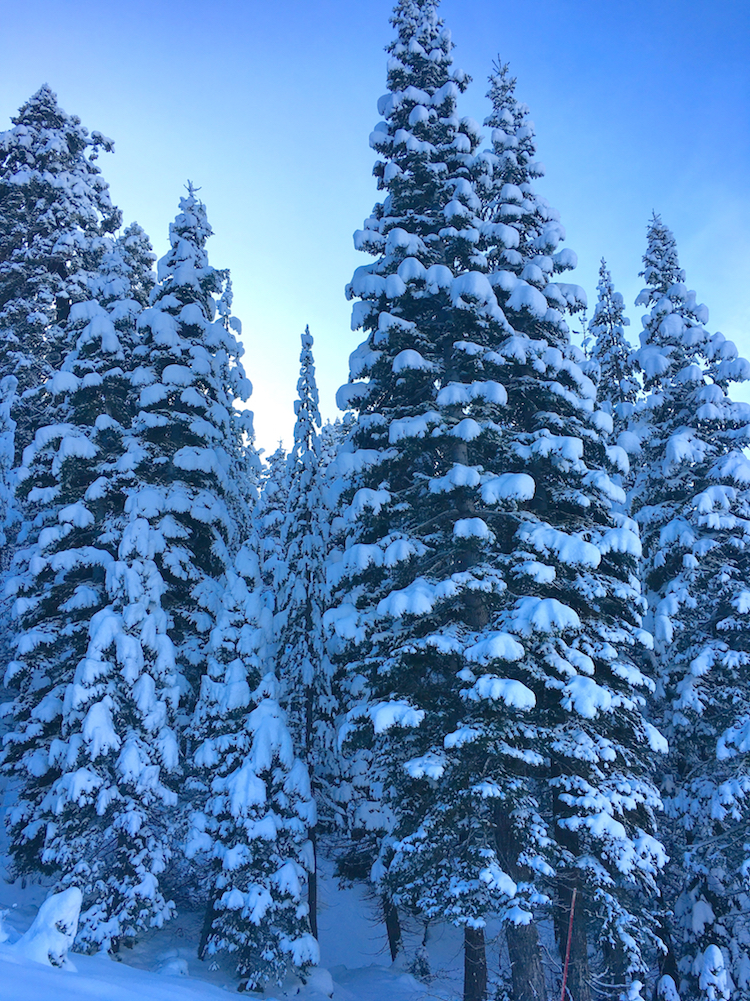 Squaw Valley is more than a world-class ski resort, it's an icon.