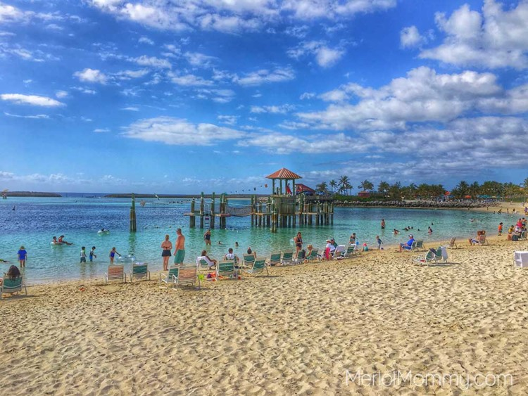 Penguin Plunge is one of the 9 Best Castaway Cay Activities.