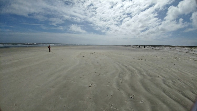 Prepare to be amazed by the beauty and expanse of the beach on Cumberland Island.