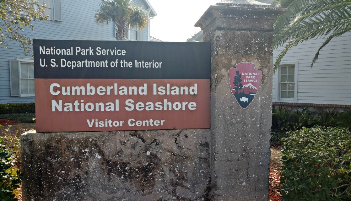 7 Reasons Kids Will Love Cumberland Island National Seashore
