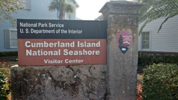 A visit to Cumberland Island National Seashore isn't your typical day at the beach!