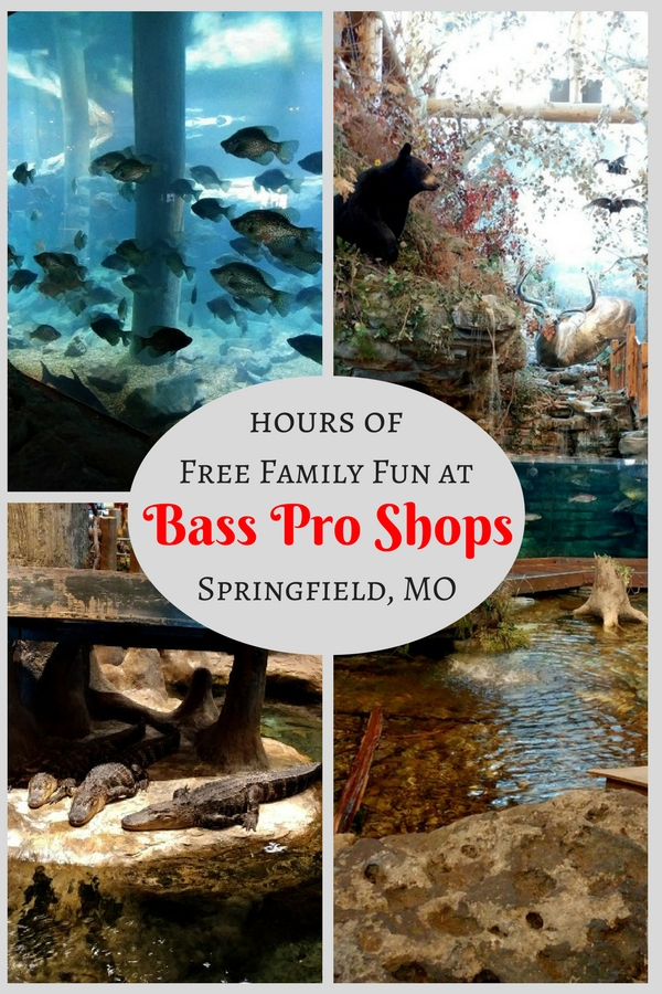 Bass Pro Shops, The Grandaddy of all outdoor stores provide hours of free family fun in Springfield MO with live animals and free on-site museums.