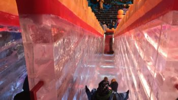 Slide down an ice slide at ICE! in Grapevine, Texas.
