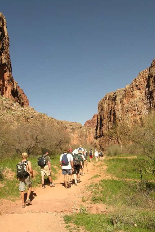 Hikers on trail in canyon, an activity offered at wellness retreats, one way to reset your lifestyle.