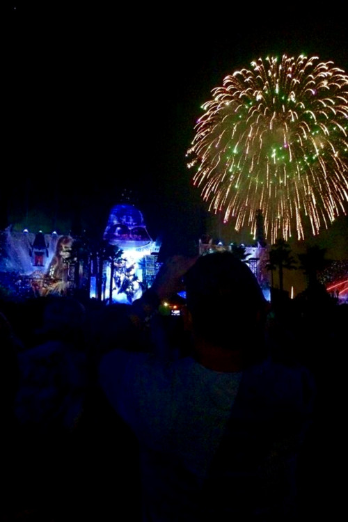 Star Wars: A Galactic Spectacular captivates Guests with the sights and sounds of a galaxy far, far away at Hollywood Studios.