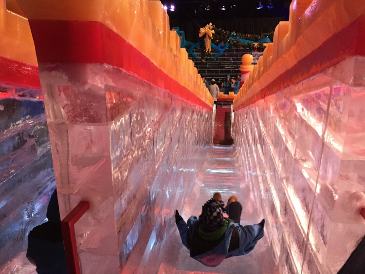 Gaylord Texan's ICE! is one of the best things to do in Grapevine, Texas.