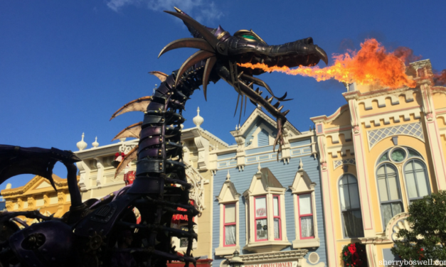 Make the Most of One Day in Magic Kingdom: A 13-Step Touring Plan