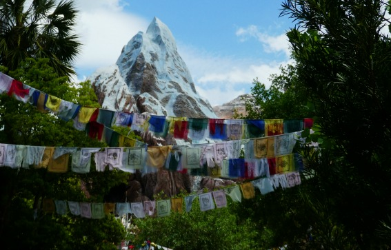 One Day Animal Kingdom Disney Everest