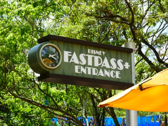 One Day Animal Kingdom Disney FastPass