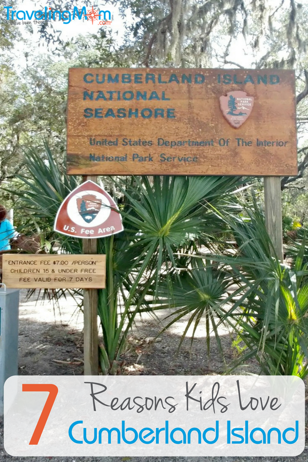 Kids love visiting Cumberland Island National Seashore! We've got seven reason why you should make it a must stop on your next trip to the Georgia coast.