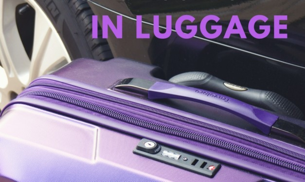 Tips for Choosing the Right Travel Luggage