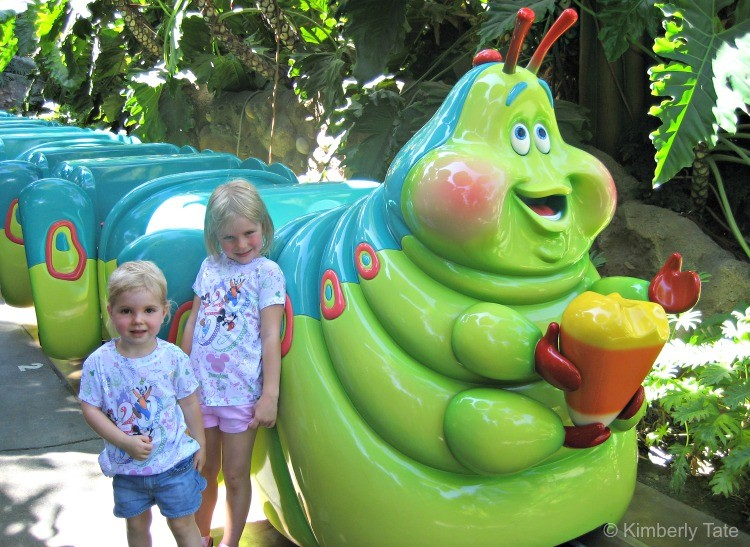 Heading to Disneyland with preschoolers? Attraction found in A Bug's Land are great for that age!