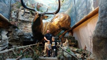 Where can you see polar bears and alligators? At outdoor retailer Bass Pro Shops! The best part? It's free family fun in Springfield MO!