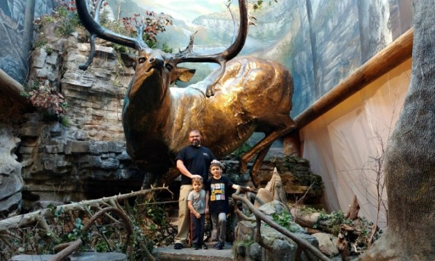 Hours of Free Family Fun at Bass Pro Shops in Springfield MO