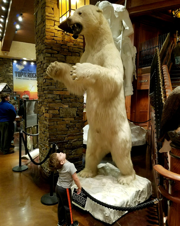 child looking up at giant taxidermy polar bear Check out free family fun in Springfield MO at Bass Pro Shop.