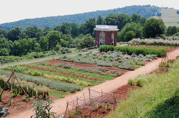 Things to do in Charlottesville, VA - tour the gardens at Monticello.