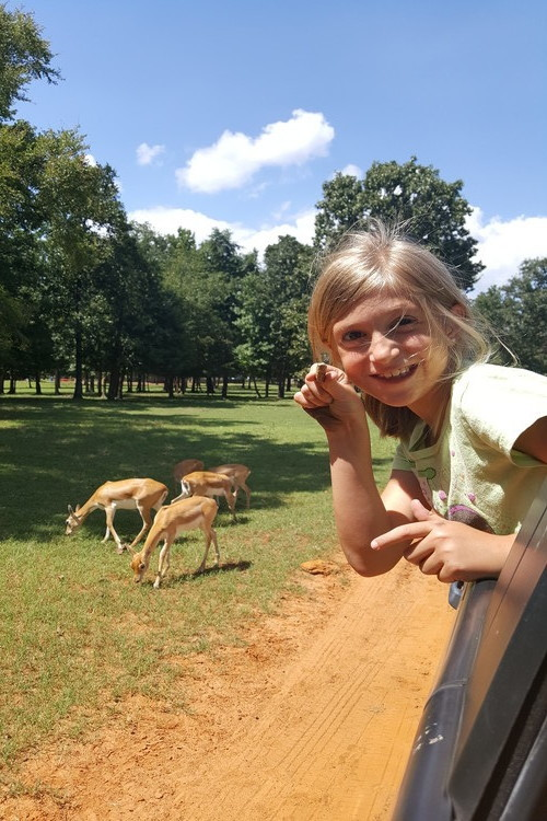 Animal adventures during an East Texas day trip visit to Cherokee Trace