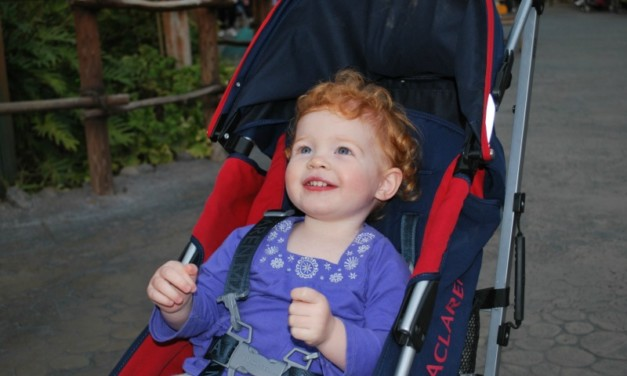 Best Strollers for Travel with Babies and Toddlers