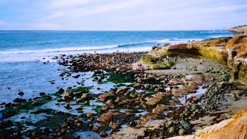 Explore 7 California National Park Sites within 4 hours of Los Angeles. With redwood trees, tide pools, and deserts, the parks offer nature at its best.