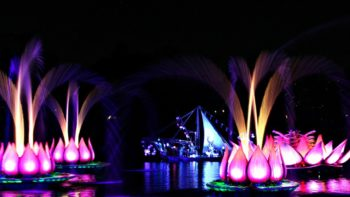 Disney's Animal Kingdom at Night: The Ultimate Guide For Families