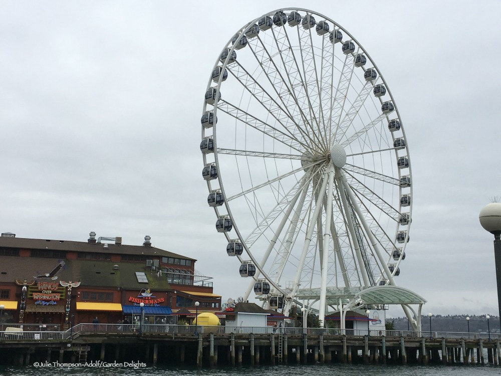 Things to Do in Seattle Great Wheel