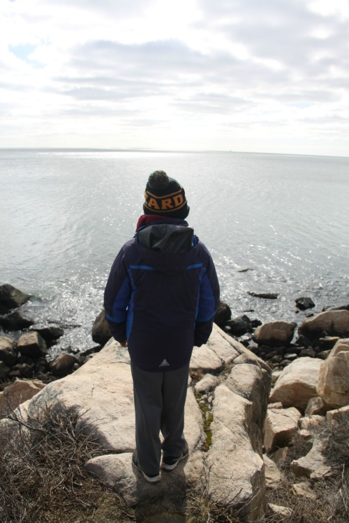 Looking for CT family hikes? Bluff Point State Park sports breathtaking views.