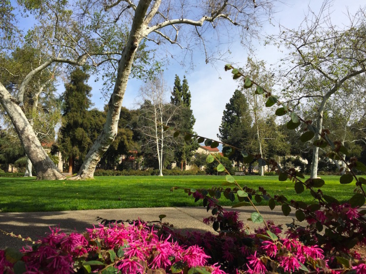 Explore A College Campus During A Weekend In Claremont, California