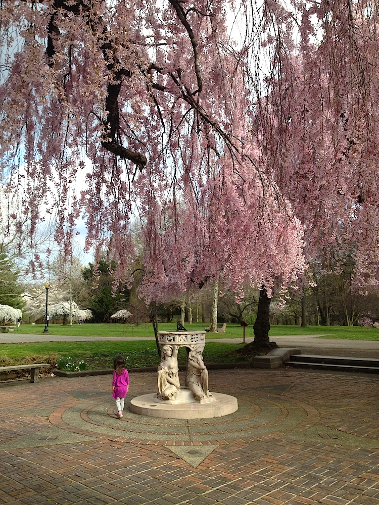 The Horticultural Center is a sculpture garden and free place to enjoy cherry blossoms in Philadelphia
