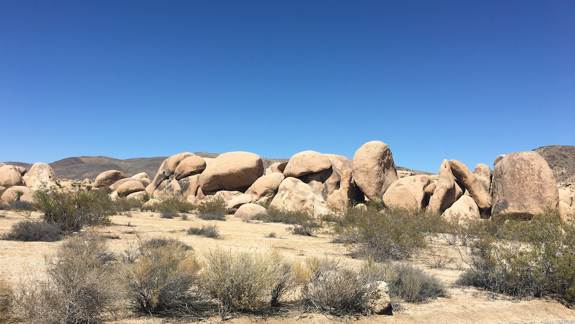 Explore the California desert in Joshua Tree, east of Los Angeles.
