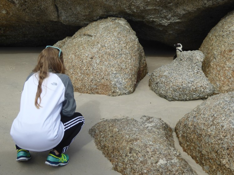 One of the things to do with kids in Cape Town is Penguins on Boulder Beach in South Africa.