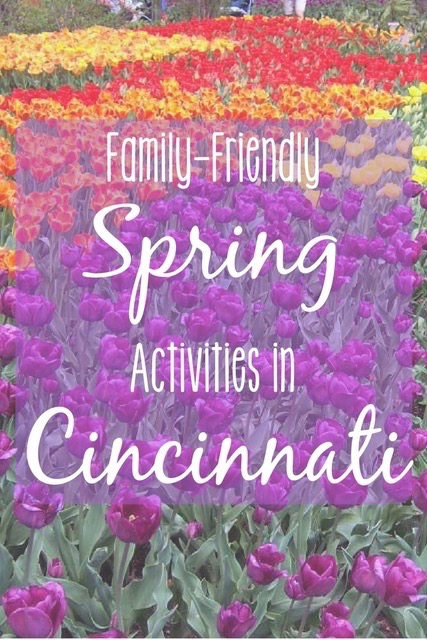 The flowers are beginning to bloom! It's family play time in Cincinnati. Read on for the 7 best things to do with kids in Cincinnati in the spring.