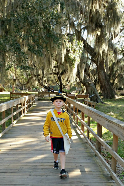 St. Simons Island has Spanish moss and a junior ranger program at Fort Frederica. This Georgia spot makes an awesome southeast road trip destination.