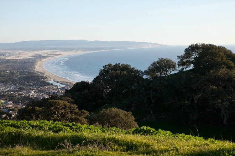 Things to do on the Central Coast of California: Visit Pismo Beach Preserve.