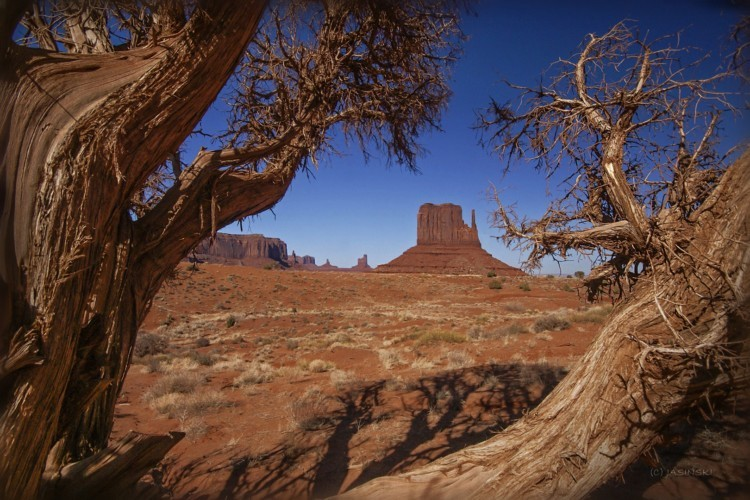 How to visit Monument Valley Navajo Tribal Park