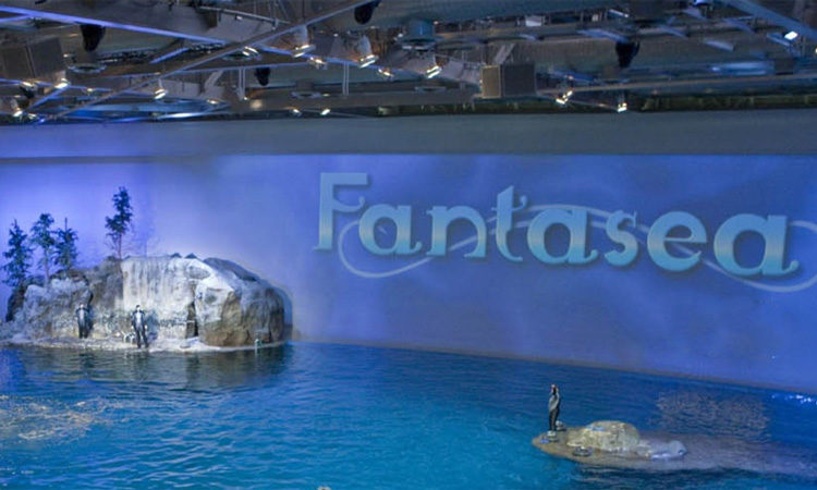 The Fantasea Aquatic Show makes the admission to the Chicago Shedd Aquarium worth it