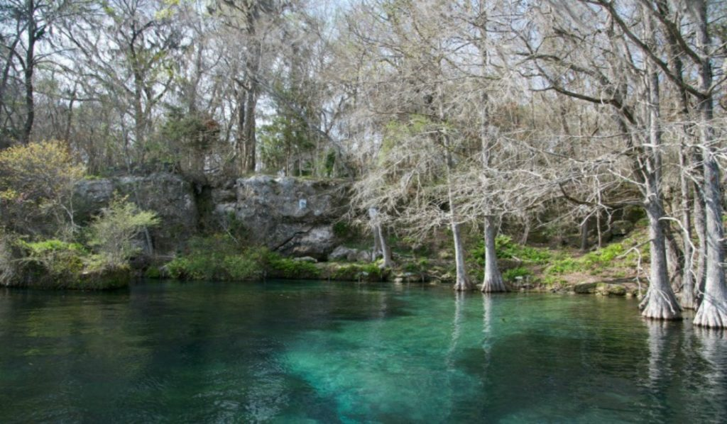 The state of Florida has superb spring options, such as Blue Spring in Marianna, many of which are in Northwest Florida.