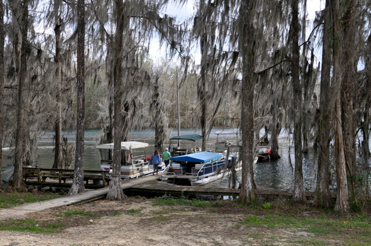 Preparing for our fun pontoon boat ride through canopies of Spanish Moss with Cave Adventures.