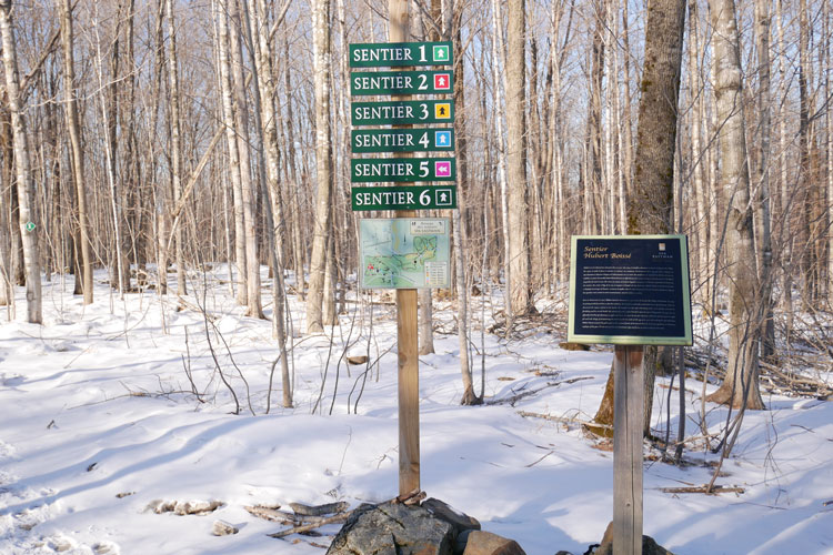 trail markers at Spa Eastman walking is one way to kickstart healthy habits