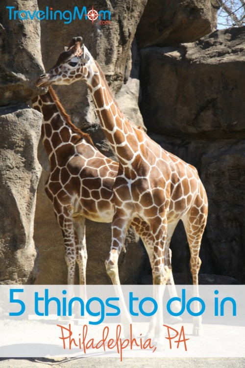 From the Franklin Institute to the Philadelphia Zoo, there are tons of fun destinations and activities for folks during a family trip to Philadelphia.