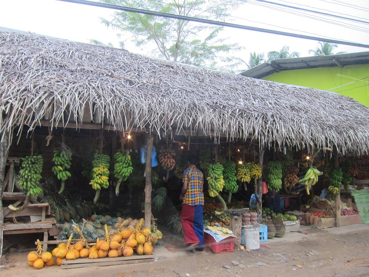 village roadside shop in Sri Lanka selling bananas and coconuts.