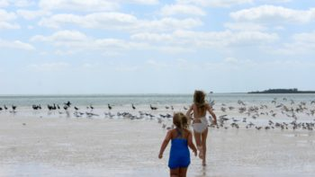How to have a great family vacation in Pasco County Florida