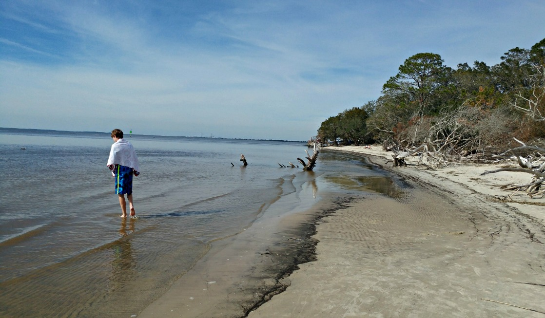 "If you're a bird watcher, you'll want to ""flock"" to St. Andrews Beach on Georgia's Jekyll Island!"