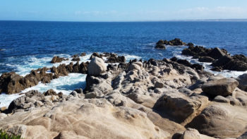 Got 2 days? What are the best things to do in Monterey California?